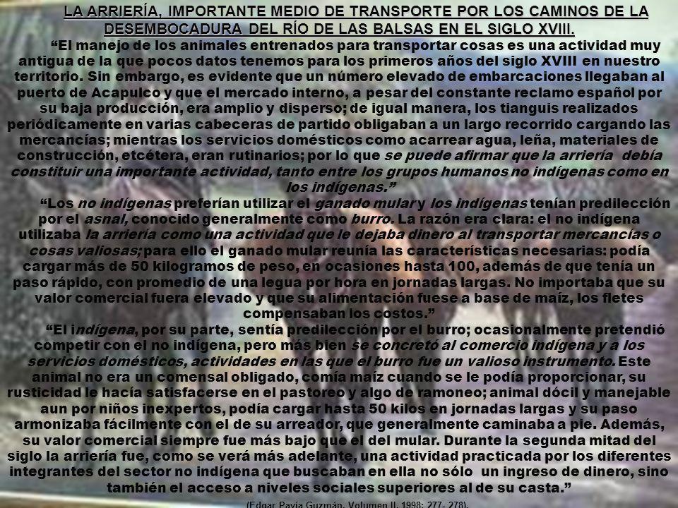 (Edgar Pavía Guzmán, Volumen II, 1998: 277- 278).