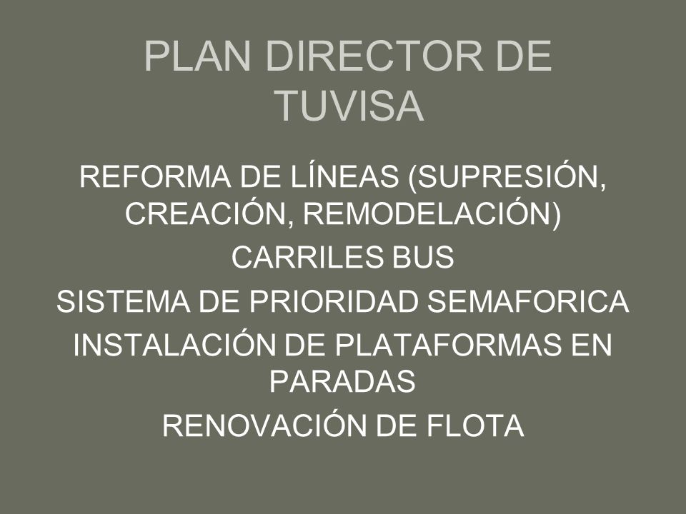 PLAN DIRECTOR DE TUVISA