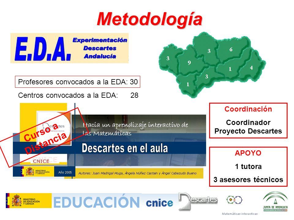 Coordinador Proyecto Descartes