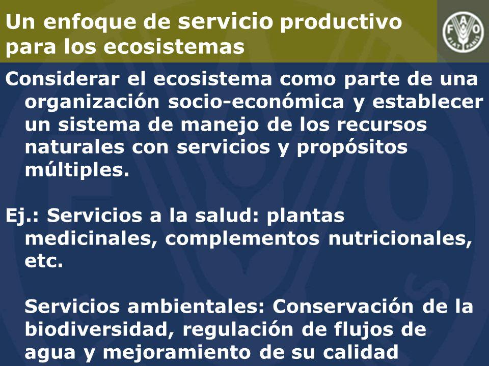 Un enfoque de servicio productivo para los ecosistemas