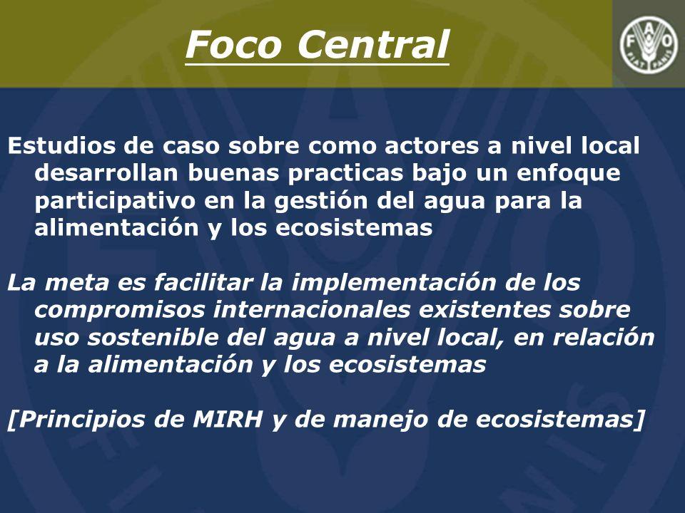Foco Central
