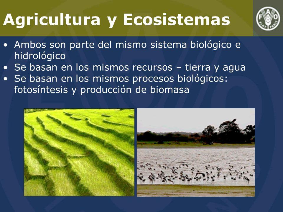Agricultura y Ecosistemas