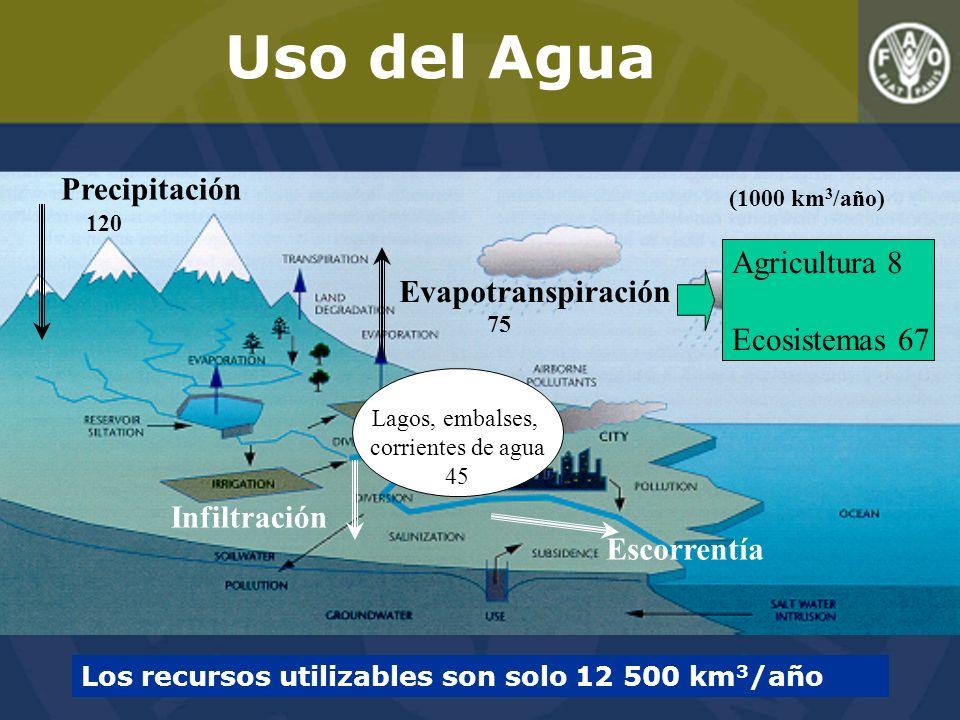 Uso del Agua Precipitación Agricultura 8 Evapotranspiración