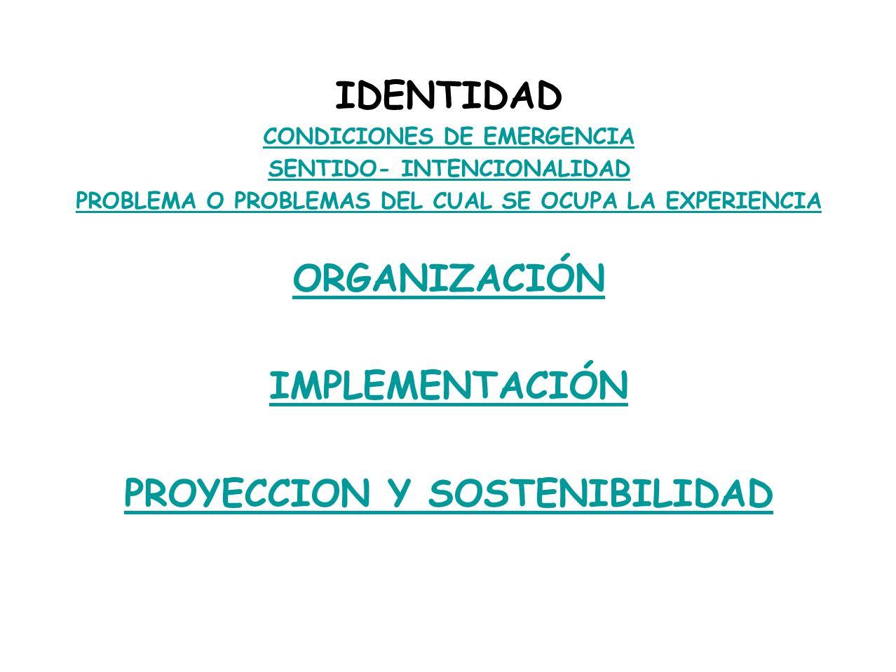 IDENTIDAD ORGANIZACIÓN IMPLEMENTACIÓN PROYECCION Y SOSTENIBILIDAD