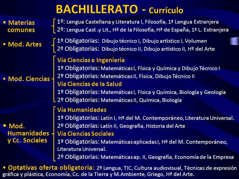 BACHILLERATO - Currículo