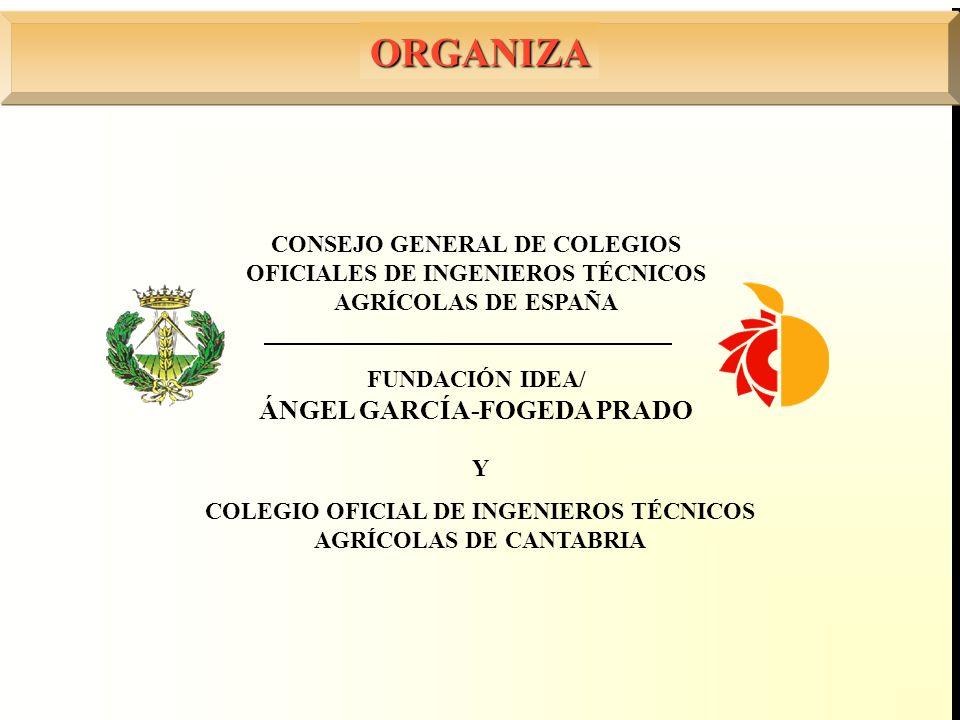 FUNDACIÓN IDEA/ ÁNGEL GARCÍA-FOGEDA PRADO