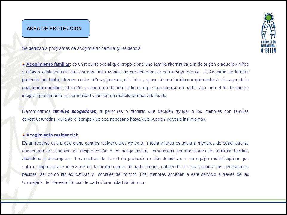 ÁREA DE PROTECCION Se dedican a programas de acogimiento familiar y residencial.