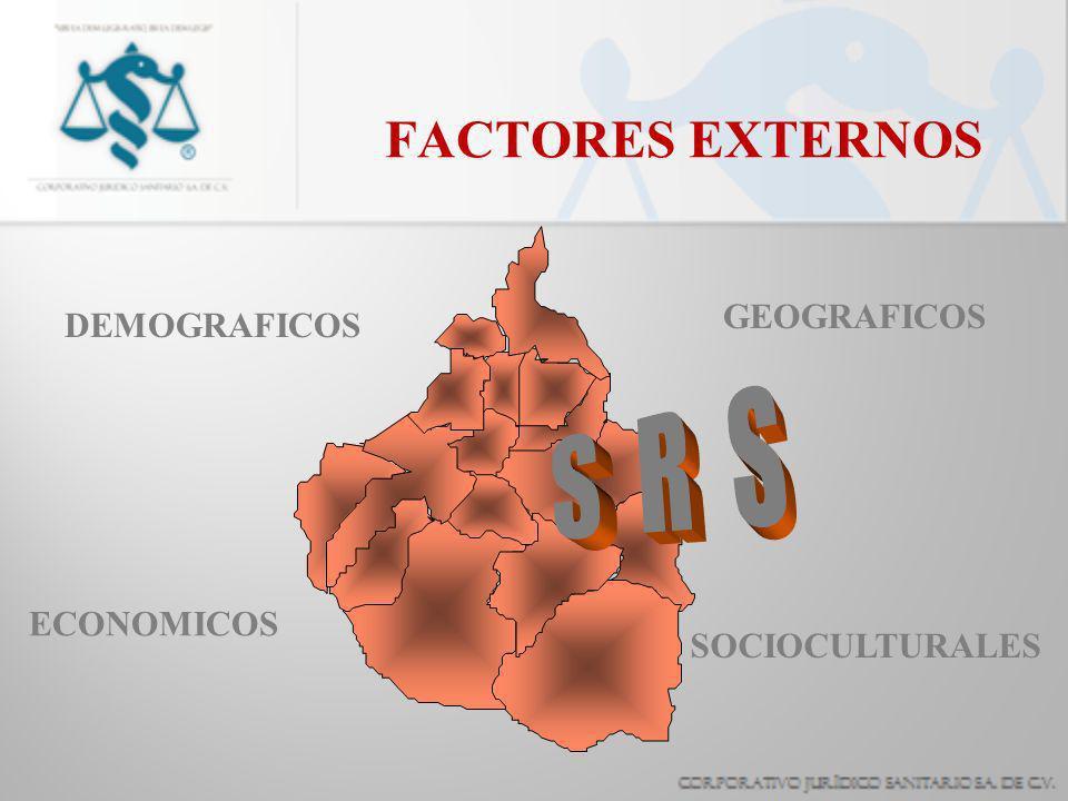 FACTORES EXTERNOS S R S GEOGRAFICOS DEMOGRAFICOS ECONOMICOS