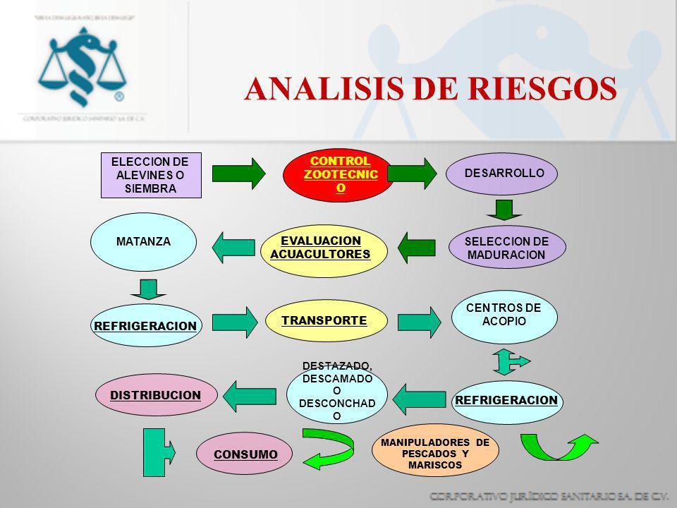 ANALISIS DE RIESGOS ELECCION DE ALEVINES O SIEMBRA CONTROL ZOOTECNICO