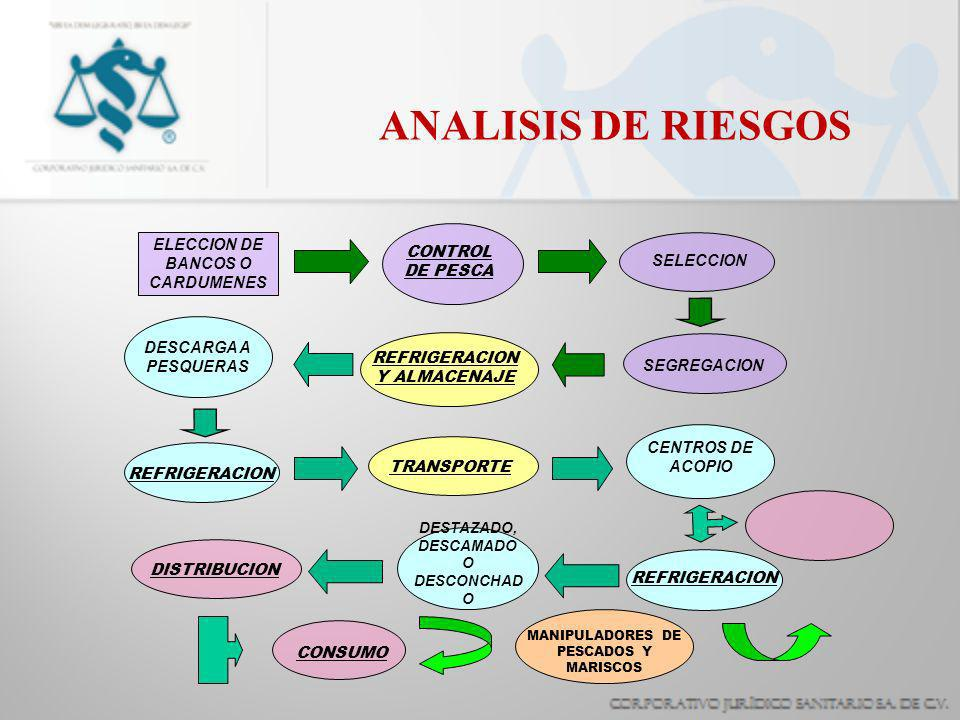 ANALISIS DE RIESGOS ELECCION DE BANCOS O CARDUMENES CONTROL DE PESCA