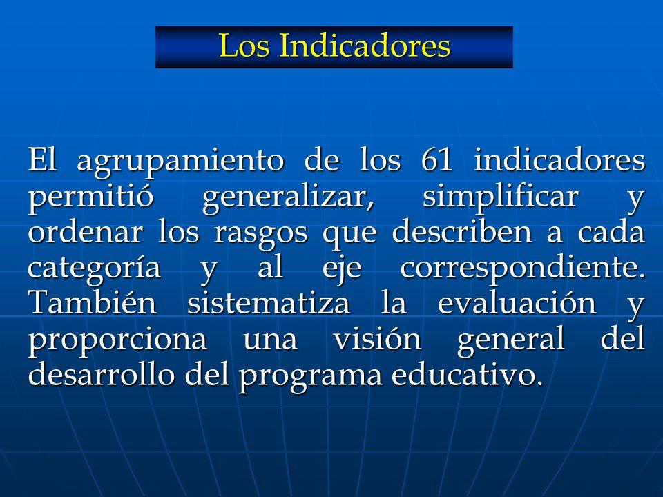 El agrupamiento de los 61 indicadores permitió generalizar, simplificar y ordenar los rasgos que describen a cada categoría y al eje correspondiente. También sistematiza la evaluación y proporciona una visión general del desarrollo del programa educativo.
