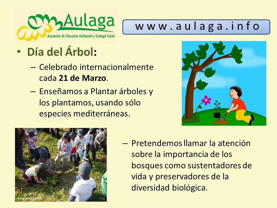 w w w . a u l a g a . i n f o Día del Árbol: