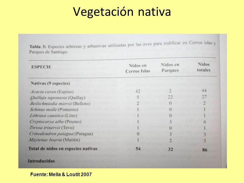 Vegetación nativa Fuente: Mella & Loutit 2007
