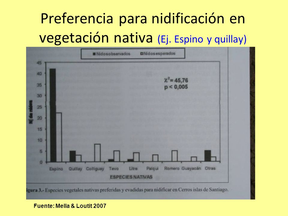 Preferencia para nidificación en vegetación nativa (Ej