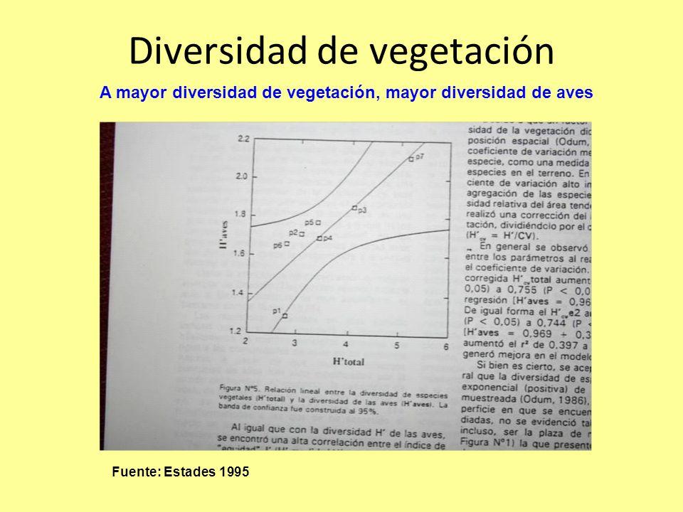 Diversidad de vegetación