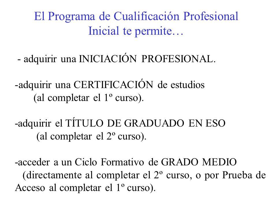 El Programa de Cualificación Profesional Inicial te permite…