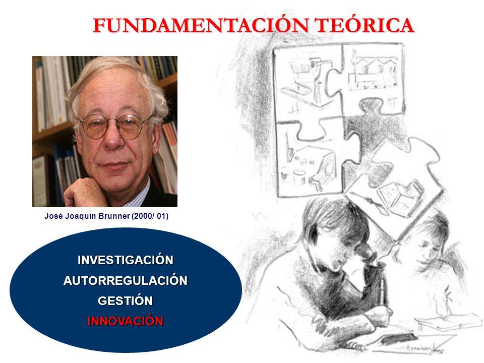 FUNDAMENTACIÓN TEÓRICA José Joaquín Brunner (2000/ 01)