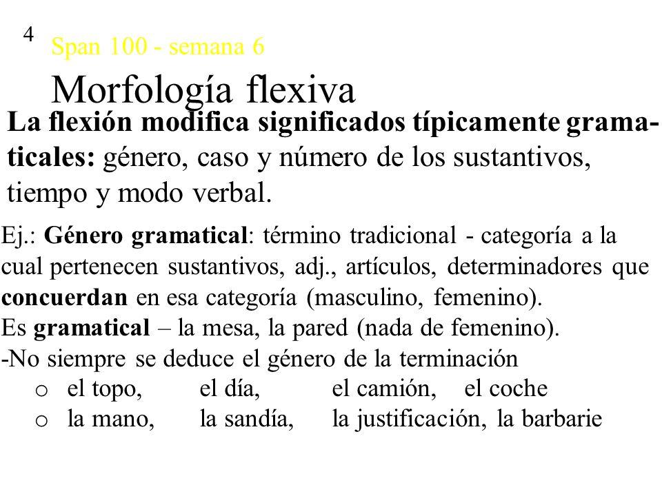 Span 100 - semana 6 Morfología flexiva