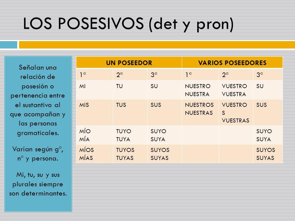 LOS POSESIVOS (det y pron)