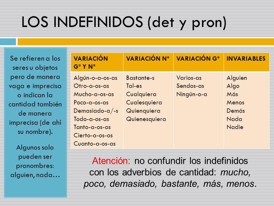 LOS INDEFINIDOS (det y pron)