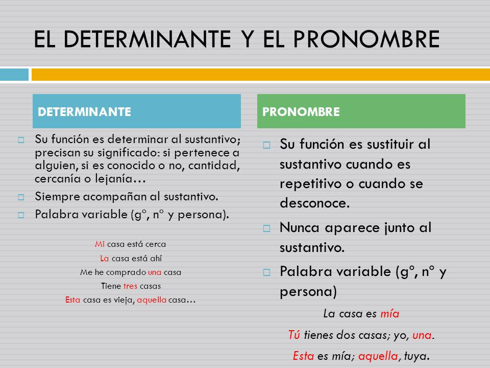 EL DETERMINANTE Y EL PRONOMBRE