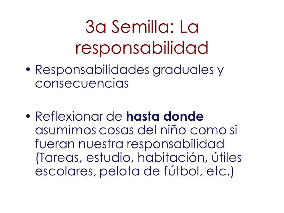 3a Semilla: La responsabilidad