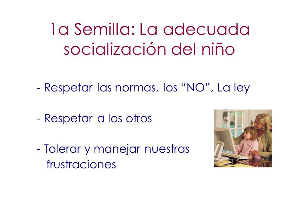 1a Semilla: La adecuada socialización del niño