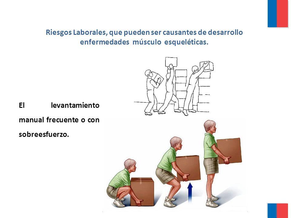 Riesgos Laborales, que pueden ser causantes de desarrollo enfermedades músculo esqueléticas.