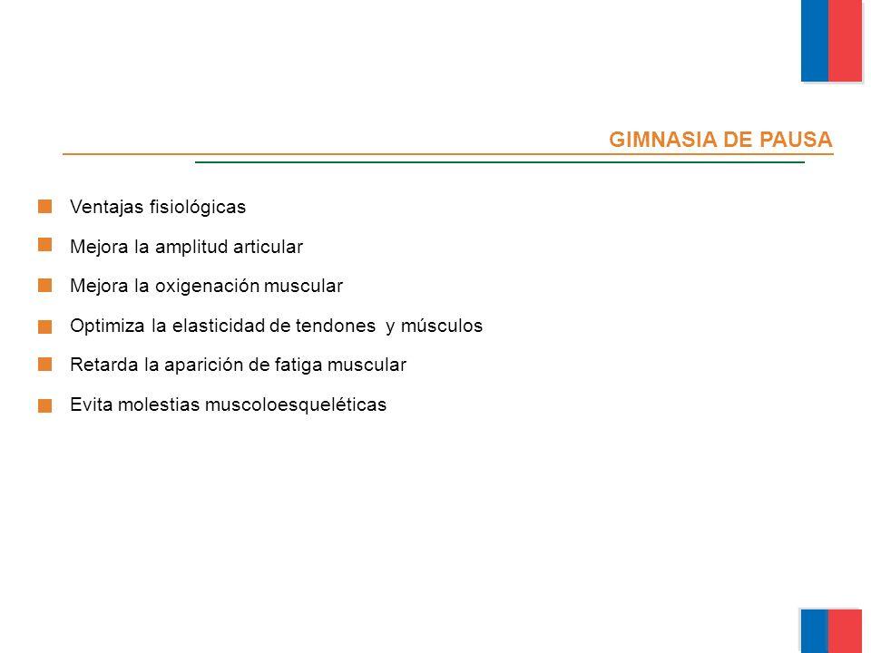 GIMNASIA DE PAUSA Ventajas fisiológicas Mejora la amplitud articular