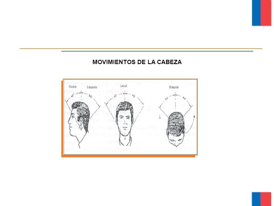 MOVIMIENTOS DE LA CABEZA