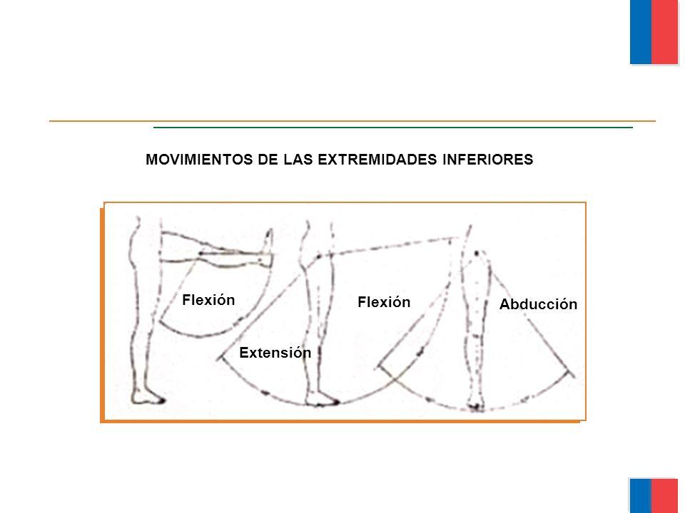 MOVIMIENTOS DE LAS EXTREMIDADES INFERIORES