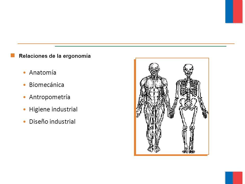 Anatomía Biomecánica Antropometría Higiene industrial