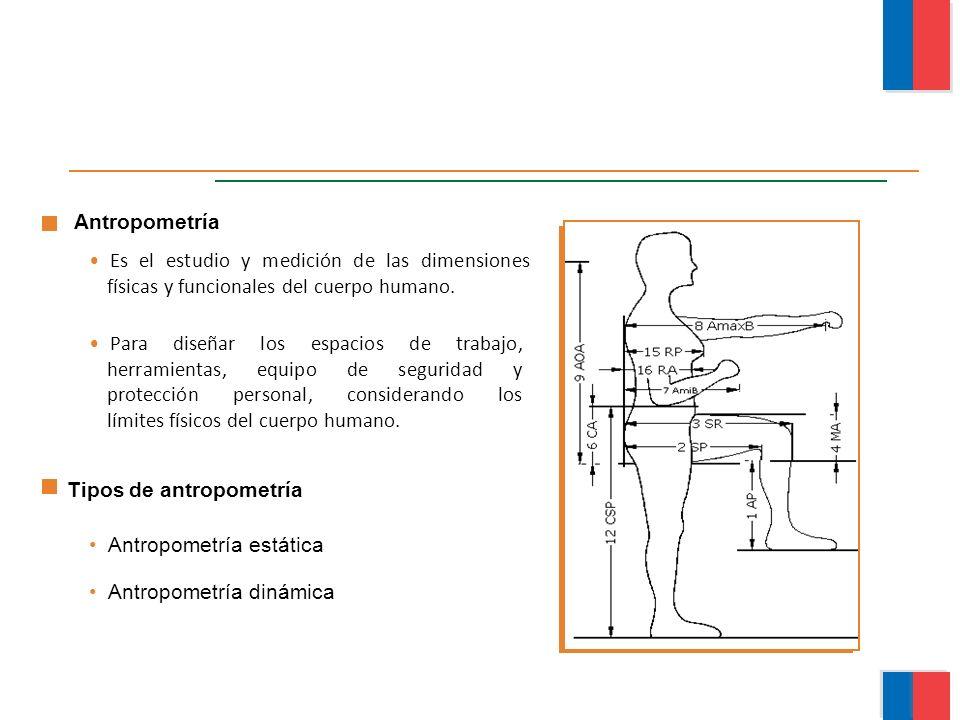 Tipos de antropometría