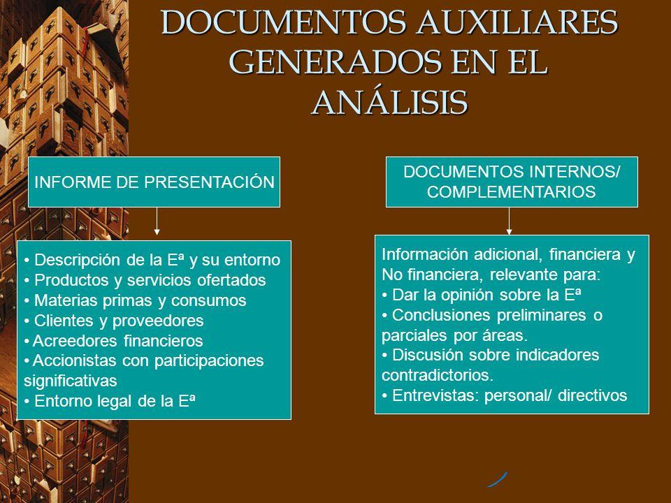 DOCUMENTOS AUXILIARES GENERADOS EN EL ANÁLISIS