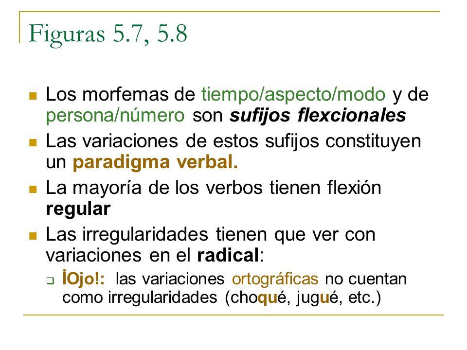 Figuras 5.7, 5.8 Los morfemas de tiempo/aspecto/modo y de persona/número son sufijos flexcionales.