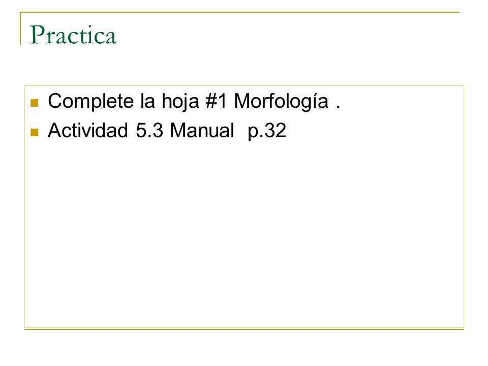 Practica Complete la hoja #1 Morfología . Actividad 5.3 Manual p.32
