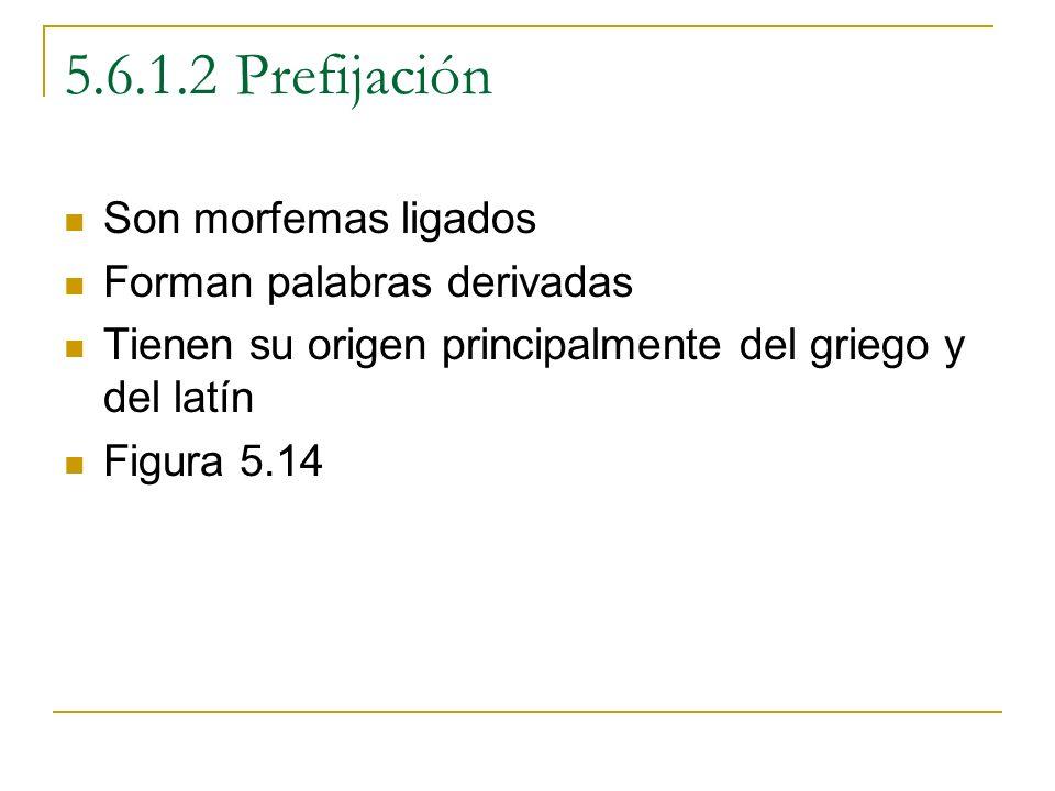 5.6.1.2 Prefijación Son morfemas ligados Forman palabras derivadas