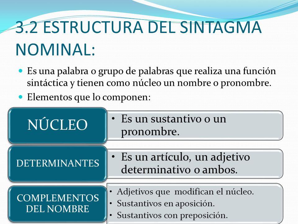 3.2 ESTRUCTURA DEL SINTAGMA NOMINAL: