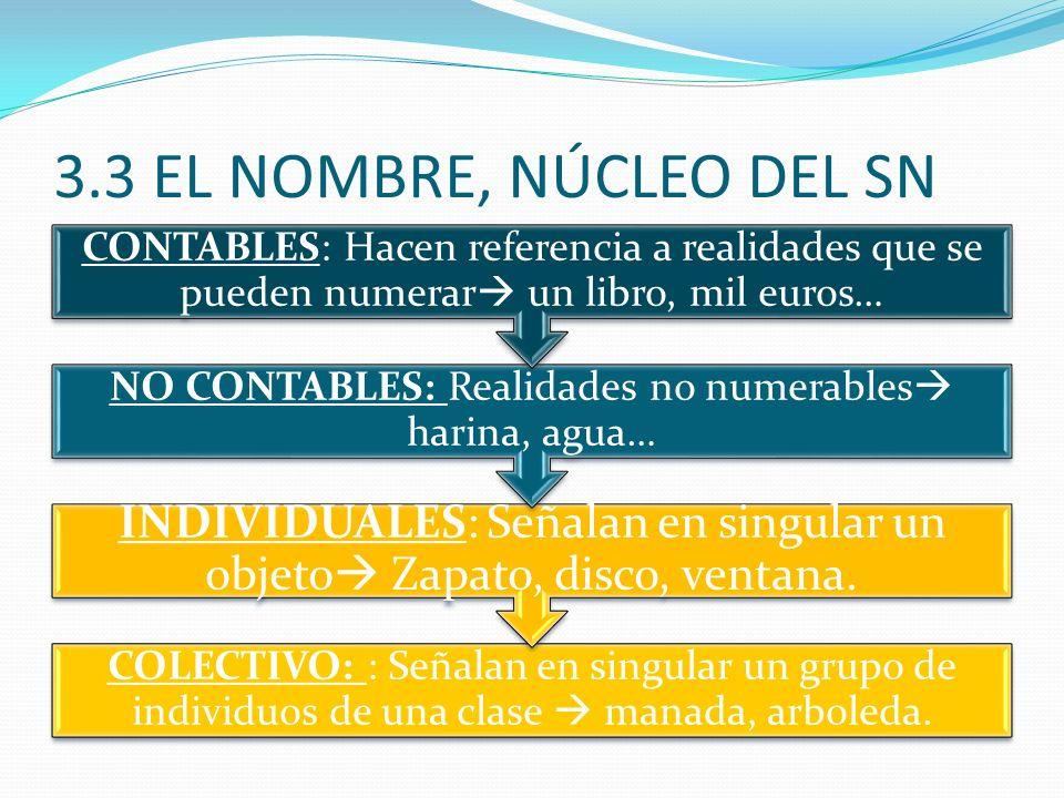 3.3 EL NOMBRE, NÚCLEO DEL SN CONTABLES: Hacen referencia a realidades que se pueden numerar un libro, mil euros…
