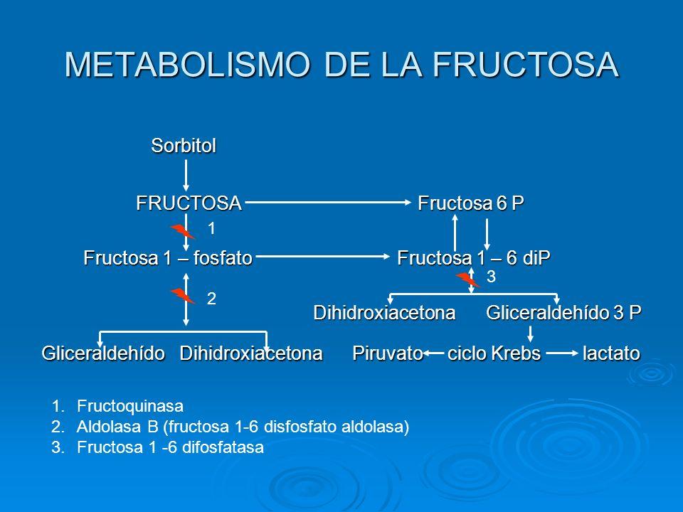METABOLISMO DE LA FRUCTOSA
