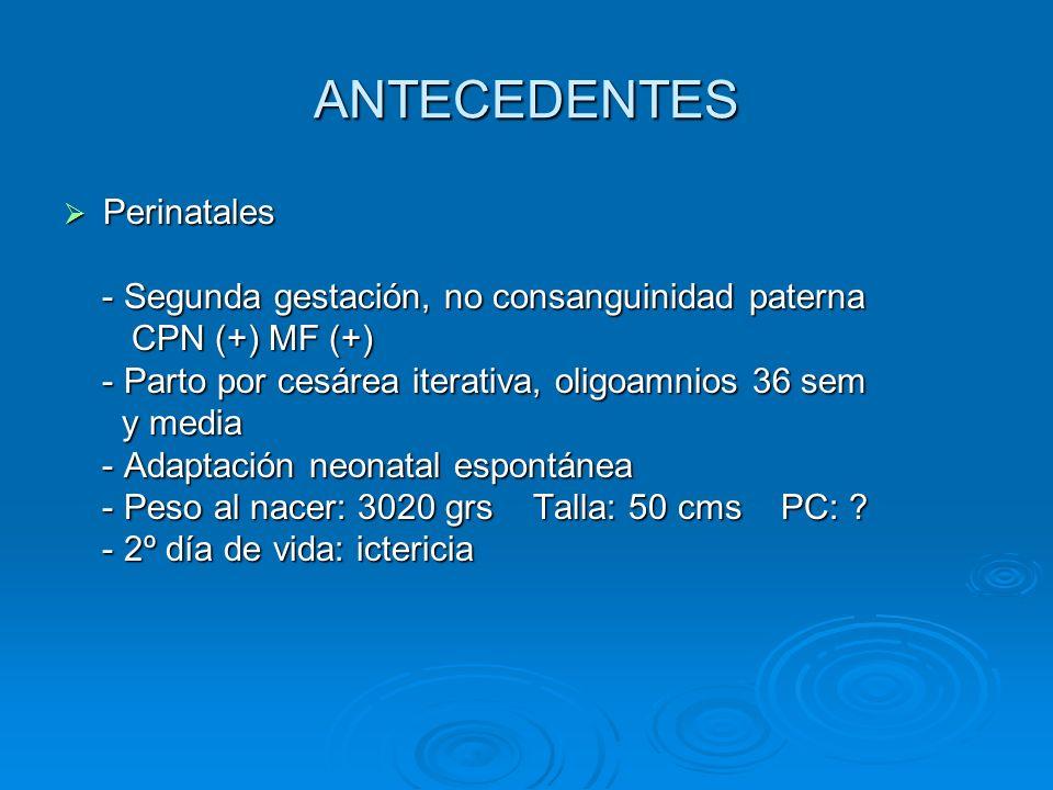 ANTECEDENTES Perinatales