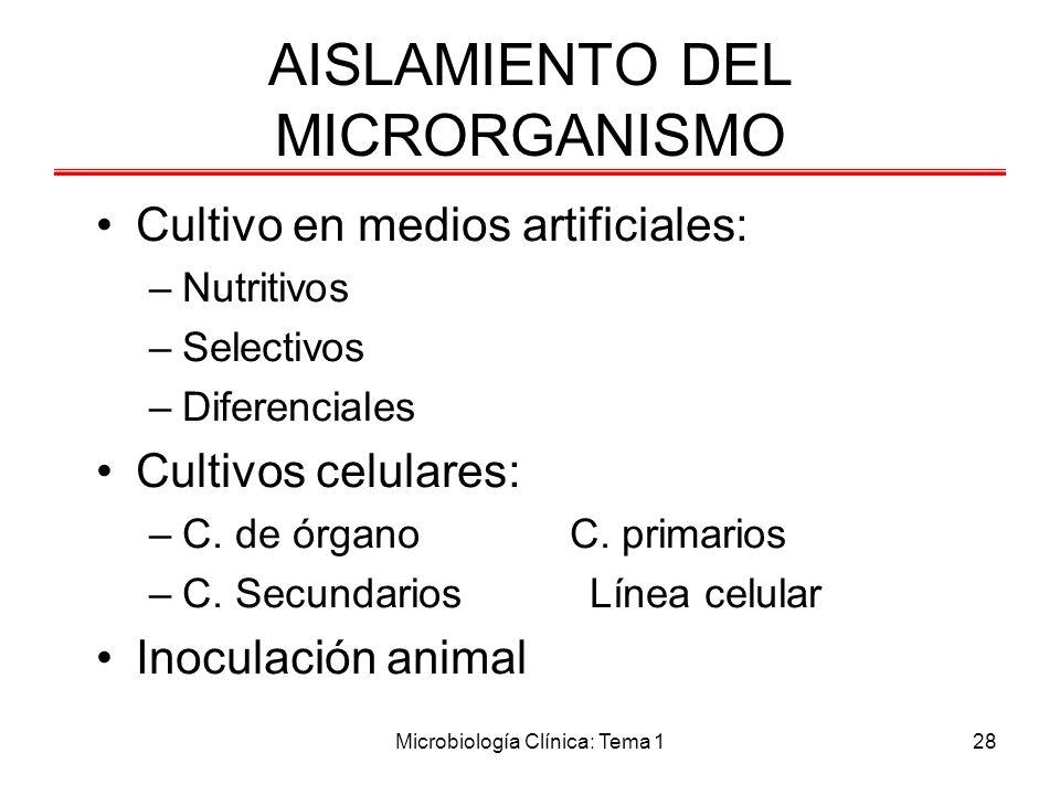 AISLAMIENTO DEL MICRORGANISMO