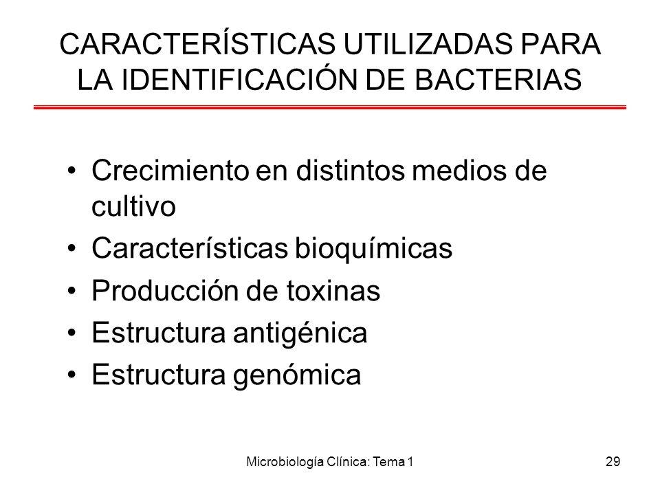 CARACTERÍSTICAS UTILIZADAS PARA LA IDENTIFICACIÓN DE BACTERIAS