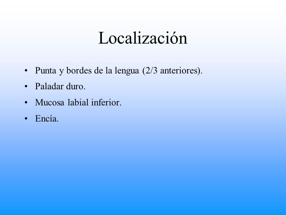 Localización Punta y bordes de la lengua (2/3 anteriores).