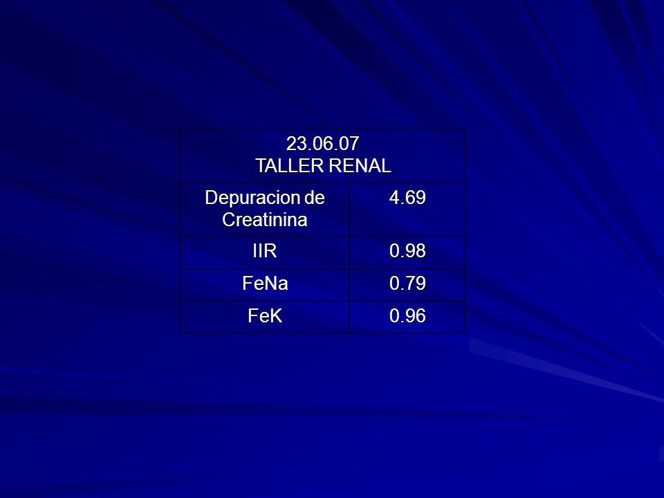 23.06.07 TALLER RENAL Depuracion de Creatinina 4.69 IIR 0.98 FeNa 0.79 FeK 0.96