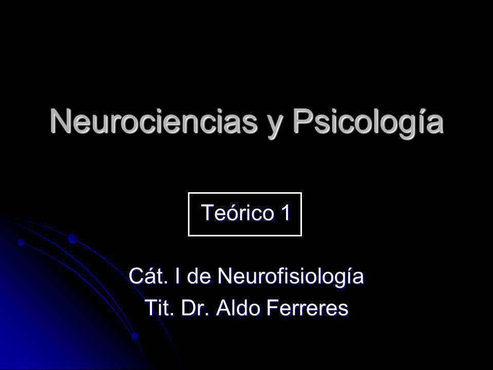 Neurociencias y Psicología