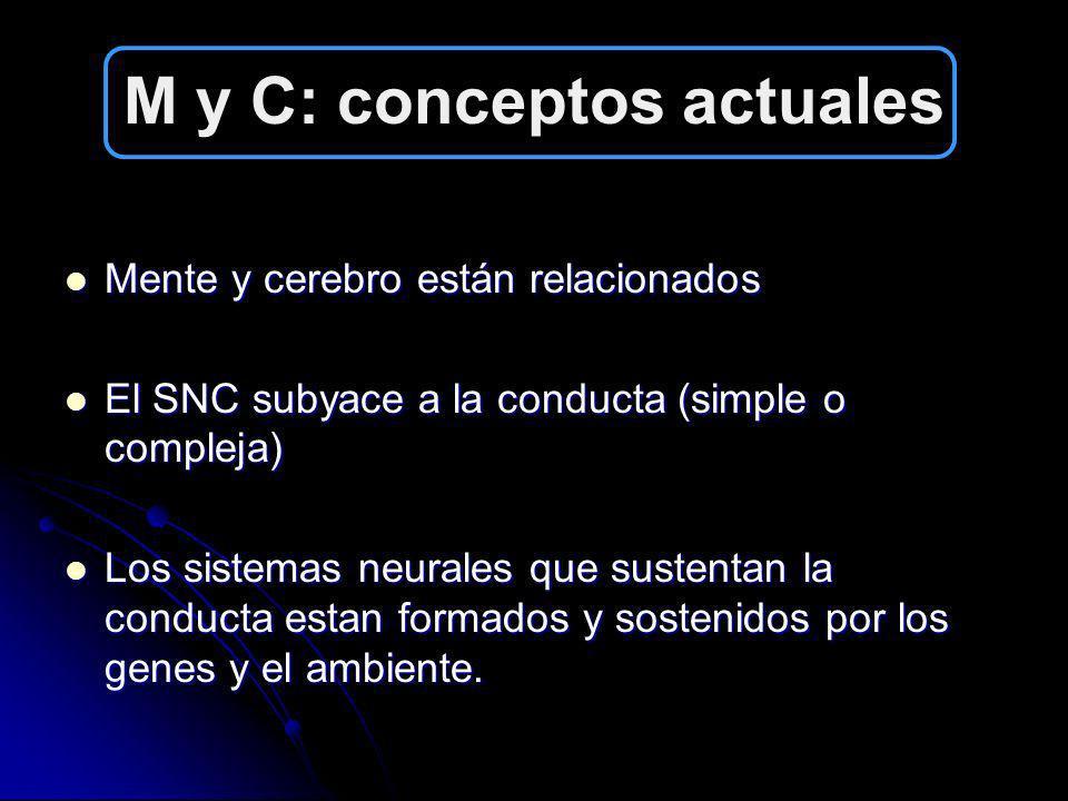 M y C: conceptos actuales
