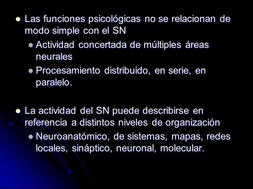 Las funciones psicológicas no se relacionan de modo simple con el SN
