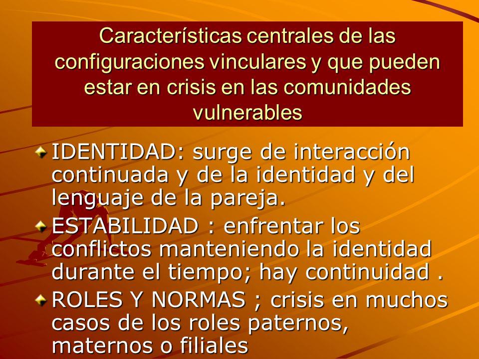 Características centrales de las configuraciones vinculares y que pueden estar en crisis en las comunidades vulnerables