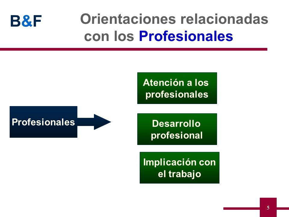 Orientaciones relacionadas con los Profesionales